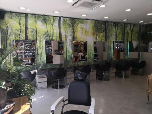 división peluqueros tela