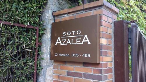 soto azalea